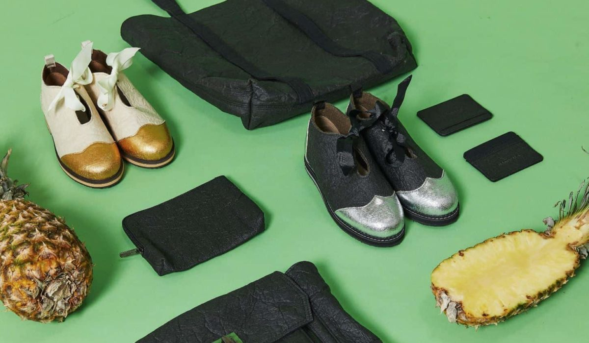 Shoes, tote bags, wallets and pineapples laid on the ground on a green background