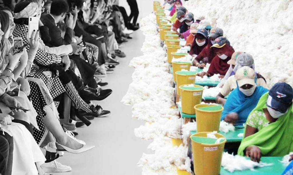 Why Is Sustainable Fashion More Expensive